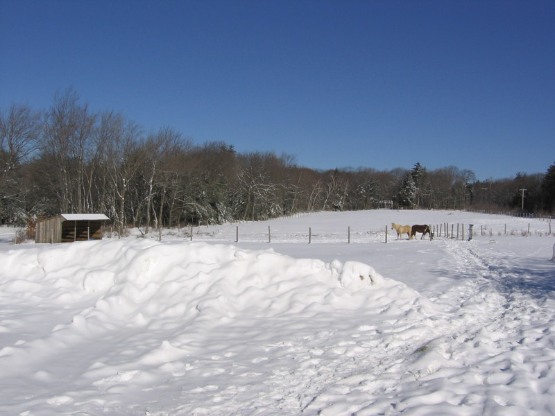 The_farm_in_winter